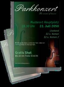 Musikfest Geige Gruen